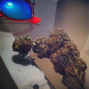 cannabis marijuana droger malta